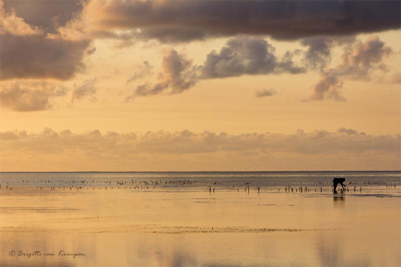 Sunrise at Zanzibar